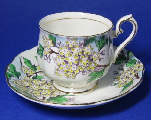 Vintage Royal Albert Hawthorn Flower of the Month #5 Tea Cup