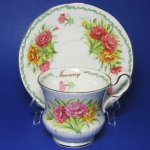 Queen's Rosina January Teacup