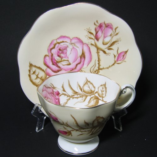 Foley Tea Cup and Saucer Pink Roses Watercolor