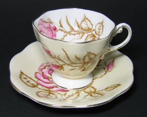 Vintage Foley Tea Cup and Saucer Pink Roses Watercolor