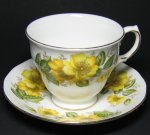 Vintage Wild Yellow Roses Royal Vale Teacup