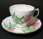 Colclough Floral Joe Pye Teacup