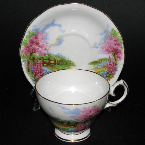 Queen Anne Meadowside Teacup and Saucer