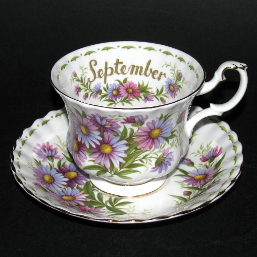 Royal Albert Michaelmas Daisy Teacup and Saucer