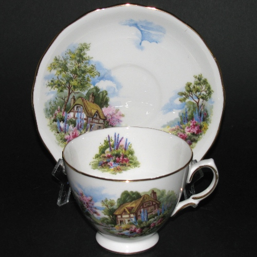 Royal Vale Cottage Scenery Teacup and Saucer