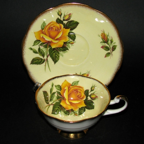 Rosina English Roses Teacup and Saucer