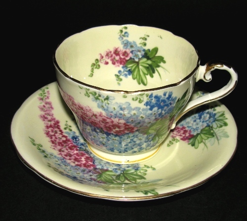 Delphiniums Teacup